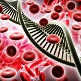 Abbvie ABBV biopharmaceuticals cell blood dna gene stem test biotech research