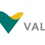 Vale SA (ADR) (NYSE:VALE)