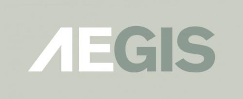 Aegis Defense Services