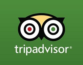 Tripadvisor Inc