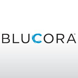 Blucora Inc (NASDAQ:BCOR)