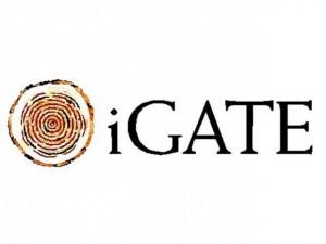 iGATE Corporation (NASDAQ:IGTE)
