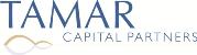 Tamar European Industrial Fund Ltd (LON:TEIF)