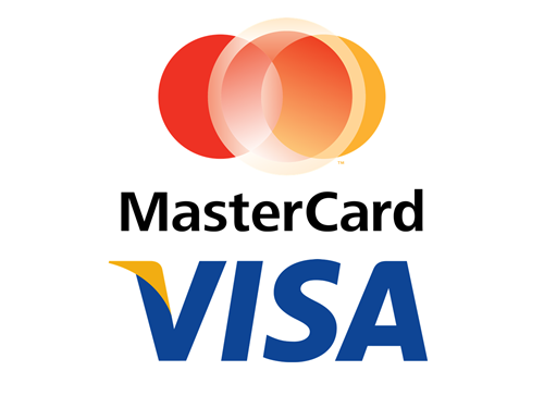 Visa, Mastercard, is MA a good stock to buy, is V a good stock to buy, Ed McLaughlin
