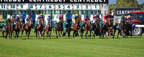 CHDN, Churchill Downs, Tips for betting on horses