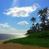 hawaii-503132_640