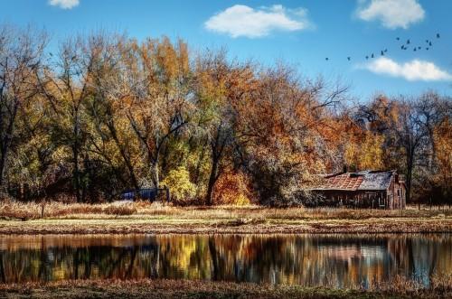 colorado-rural-fall-ranch-cabin-stream-water