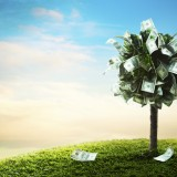 money growing, ilustrativr, design, investment, savings, tree, loan, profit, concept, wealth, business