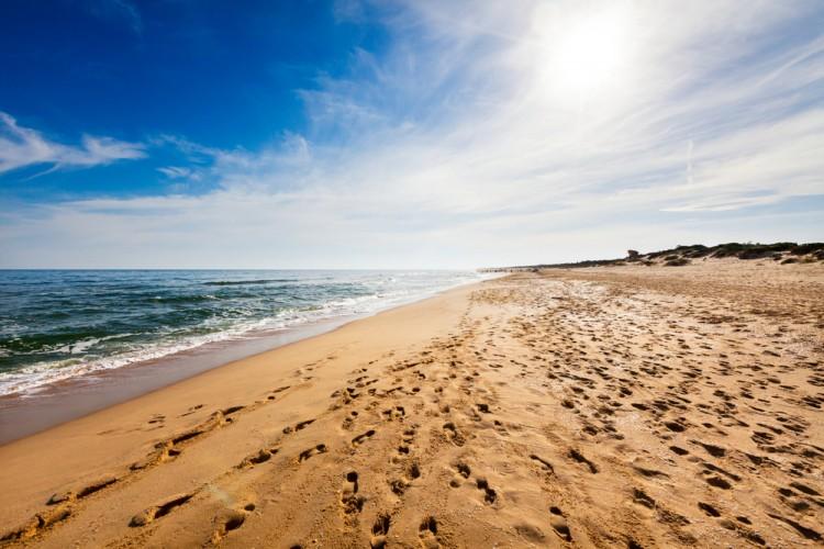 australia, beach, shore, imprint, mark, hanging, travel, stroll, silence, foot, horizon, waves, freedom, walk, footstep, tracing, seashore, sea, footprint, ground, vacations, sand
