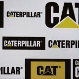 cat, brand, symbol, sign, name, logo, ilustrative, design, economy, deutschland, name, markenname, emblem, berlin, icon, embleme, brand, cat, company, marke