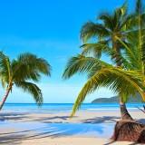 solomon, island, beach, sunset, caribbean, bay, getaway, sea, sunlight, tree, coast, tropics, shore, tropical, green, white, travel, sand, holiday, swimming, sunny, horizon, vacation, holiday, paradise