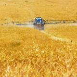 agriculture-89168_1280 LNN