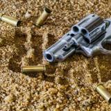 firearm-409252_1280