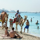 United Arab Emirates Arabic Dubai Camel Ride Coast Leisure Travel