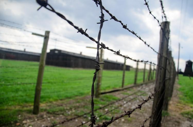 fence-444416_1280