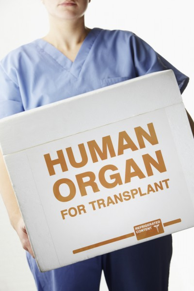 Countries Where You Can Legaly Buy a Kidney or Other Organs