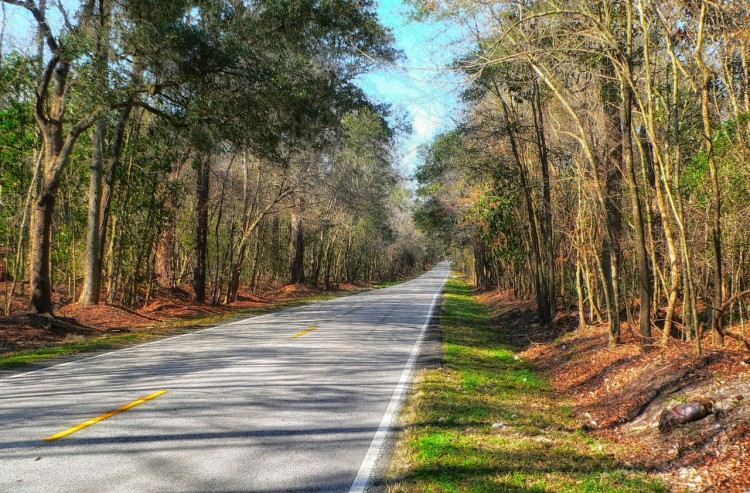 Most Dangerous States for Pedestrians in 2015 - South Carolina