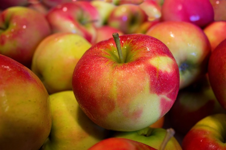 Most Consumed Fruits in the US - Apples