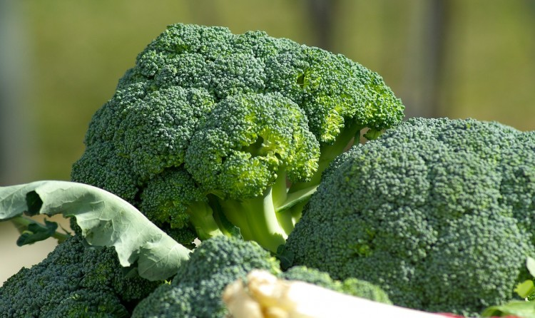 Most Consumed Vegetables In the US broccoli