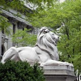 New York City Library Lion by sculptor Edward Clark Potter were dedicated in 1911.