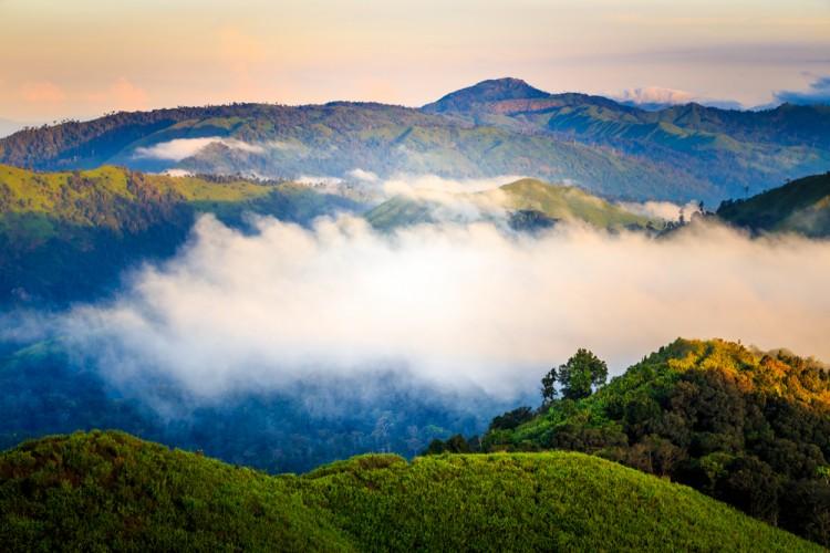 Siwabud Veerapaisarn/Shutterstock.com