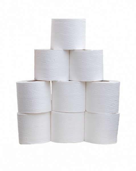 toilet-roll-220415_1280 11 Easiest and Best Paying Jobs of 2015