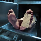 death, dead, tag, toe, life, end, metal, morbid, medical, horror, lifeless, human, cadaver, stiff, deceased, foot, sign, funeral, stress, accident, corpse, mortuary, morgue,