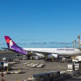 hawaiian, hawaii, airport, honolulu, fly, gate, travel, load, luggage, flight, island, holiday, pacific, terminal, airline, tourists, plane, trip View Images by Category