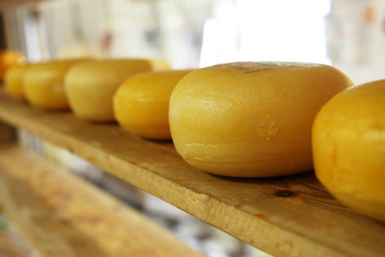 Countries that Produce The Most Cheese in The World