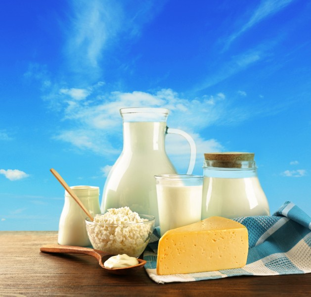12 Countries with Highest Dairy Consumption and Low Osteoporosis Rates