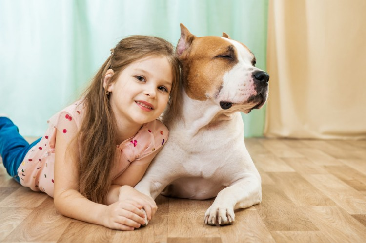 Chirtsova Natalia/Shutterstock.com Most Dangerous Dog Breeds That Bite The Most People