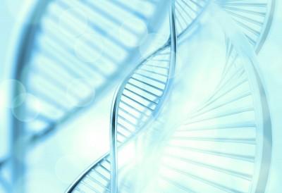 dna, bio, clone, helix, medical, health, research, cell, gene, microscopic, render, tech, chemistry, molecular, liquid, life, biotechnology, technology, medicine, molecule,