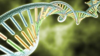 gene, dna, organism, microarray, health, green, life, human genome, biotechnology, genetic diseases, disease, molecular biology, modern medical, micro structure,