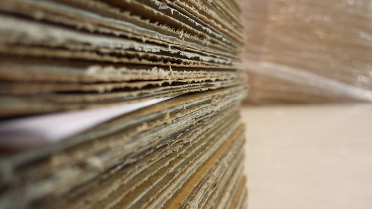 8 Countries That Produce the Most Paper in the World