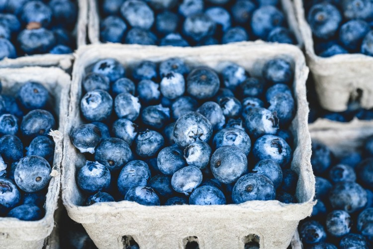 Countries that Produce The Most Blueberries in The World