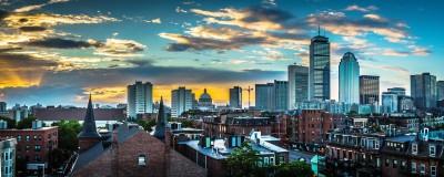 White Elm Boston
