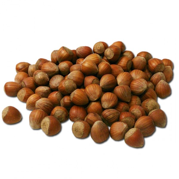 6 Largest Hazelnut Producing Countries In the World