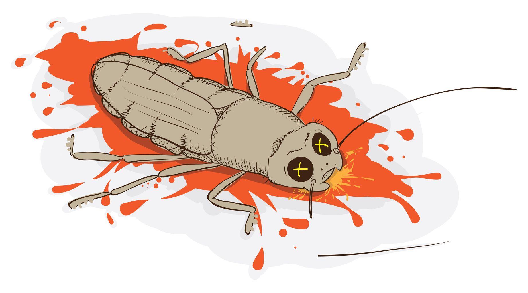 Футболки картинками, смешные картинки тапки от тараканов