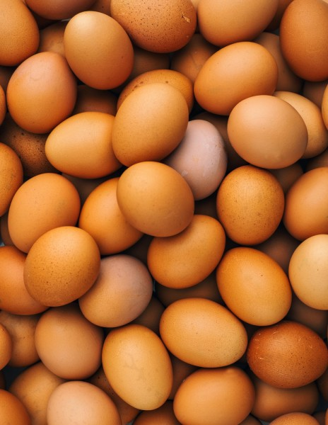 10 Largest Egg Producing Countries In The World