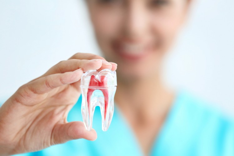 7 Easiest Dental Hygiene Programs in America