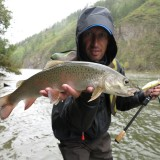 10 Easiest Fish to Catch