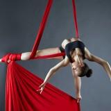 Guryanov Andrey/Shutterstock.com