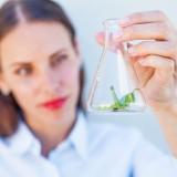 Mila Supinskaya Glashchenko/Shutterstock.com