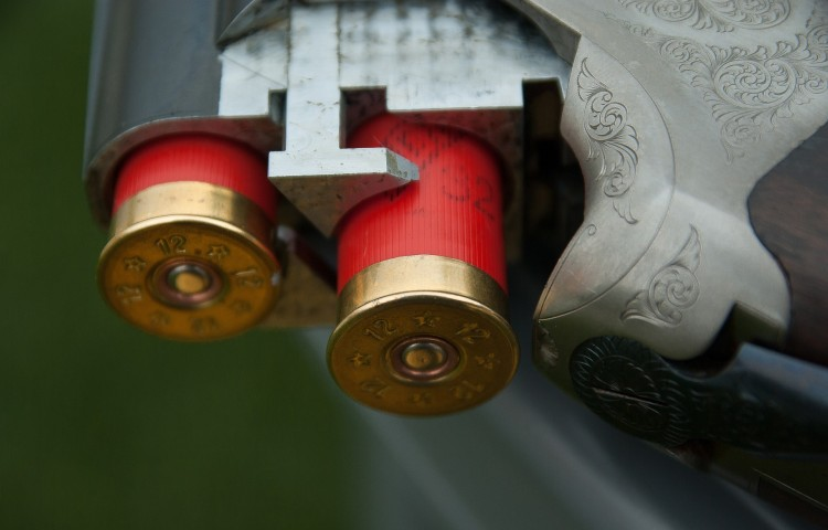 15 Countries with the Strictest Gun Laws in the World