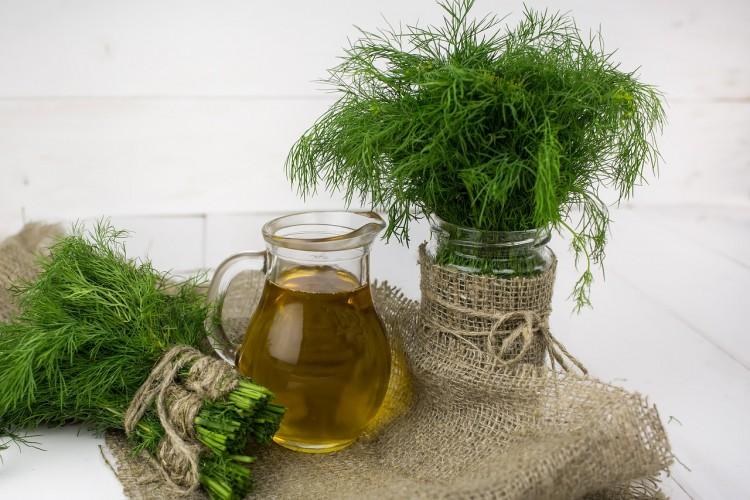 12 Most Profitable Plants for Aquaponics, Small Gardens and Backyard Nurseries