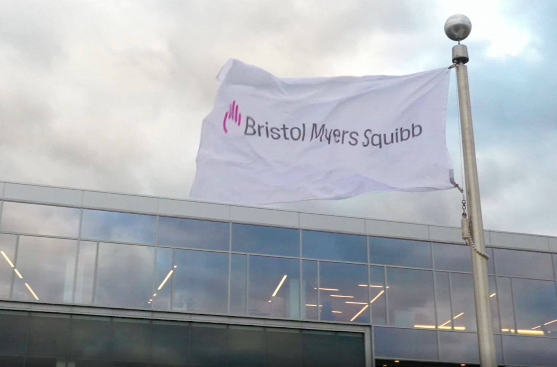 BMY Bristol Myers Squibb