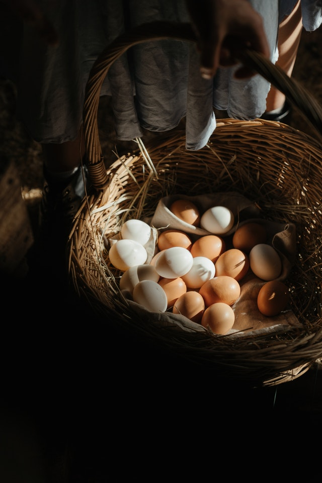 Diversification Eggs In A Basket