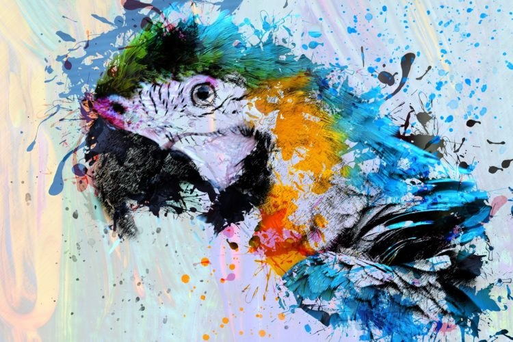 Parrot, Painting